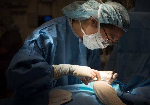 Medical Student sutures a pediatric patient