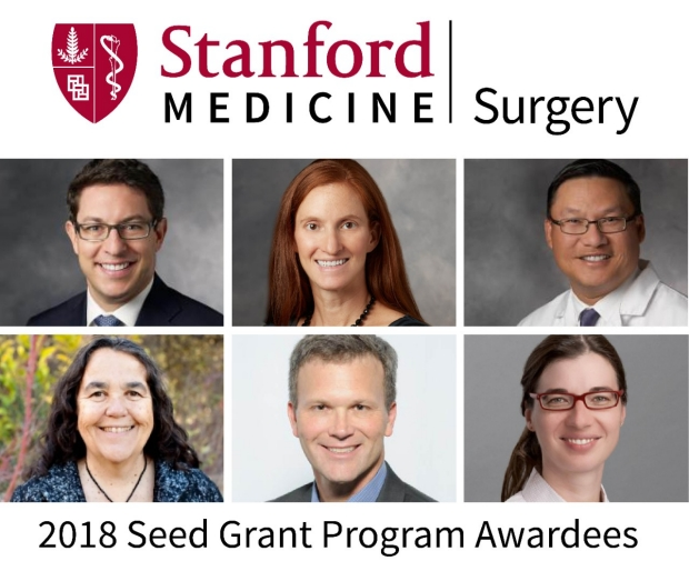 6 Stanford surgeons awarded seed grants